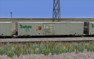 Tropicana Refrigerator car - White